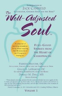The Well Adjusted Soul